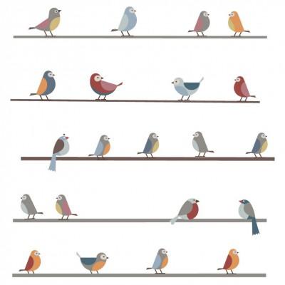 Stickers petits oiseaux sur un fil art for kids for Stickers fil a linge