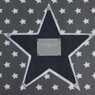 Tableau silver star étoile bleue (30 x 30 cm)