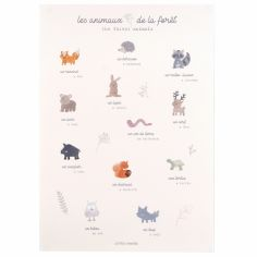 Affiche A3 Les animaux de la fôret Dream Forest