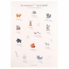 Affiche A3 Les animaux de la fôret Dream Forest