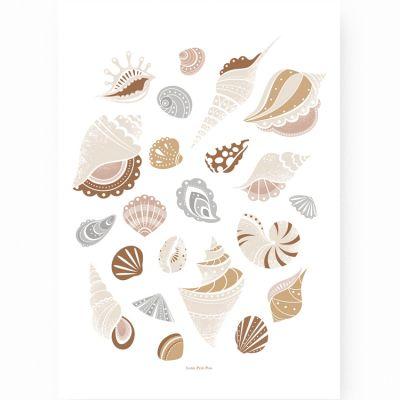 Affiche A3 Coquillages  par Lutin Petit Pois