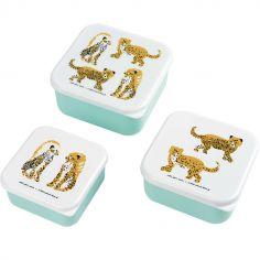Lot de 3 boîtes à goûter Le Petit Lucas Du Tertre Le Jaguar