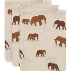 Lot de 3 gants de toilette hydrophiles Savannah éléphant