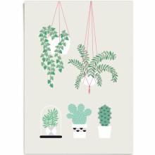 Affiche Végétal (29,7 x 42 cm)  par Zü