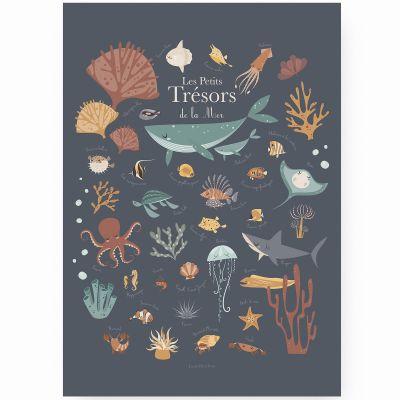 Affiche A3 Les petits trésors de la mer bleue  par Lutin Petit Pois