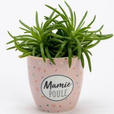 Mini pot Mamie poule (7 cm)