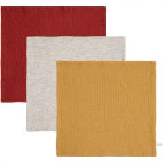 Lot de 3 mini langes Pure indian rouge et ocre (25 x 25 cm)