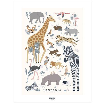 Affiche Tanzania (30 x 40 cm)  par Lilipinso