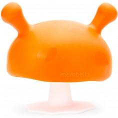 Champignon de dentition orange