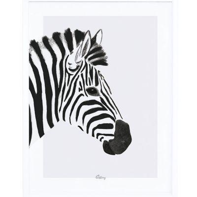 Affiche encadrée le zèbre (30 x 40 cm)  par Lilipinso
