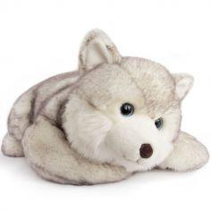 Peluche chien Husky Signature (50 cm)