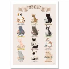 Affiche A3 Les chats de race beige