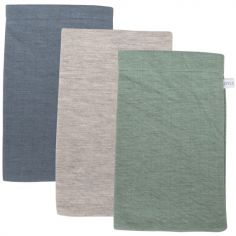Lot de 3 gants de toilette Pure mint Pure blue et grey