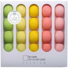 Coffret guirlande lumineuse à LED clipsable Premium Janis