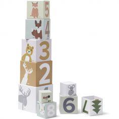 Cubes empilables Edvin (10 pièces)