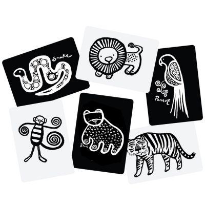 Cartes imagier pour bébé Jungle  par Wee Gallery