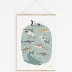 Affiche A3 Les requins avec support