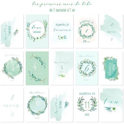 Cartes photos souvenirs mint (15 cartes)