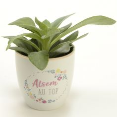 Mini pot Atsem au top (7 cm)