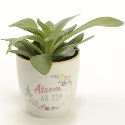 Mini pot Atsem au top (7 cm)  par Amadeus