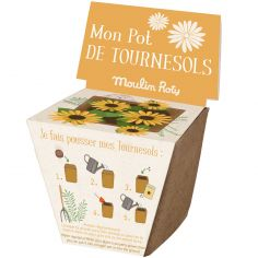 Pot de graines tournesol Le Jardin du Moulin
