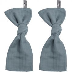 Lot de 2 langes bleus (60 x 70 cm)