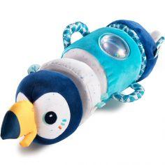 Rouleau d'activités sonore Pablo le toucan