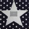 Tableau Silver Star bleu foncé étoile grise (30 x 30 cm) - Moepa