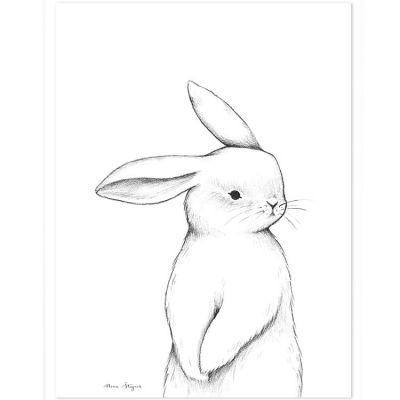 Affiche lapin de face (30 x 40 cm)  par Lilipinso