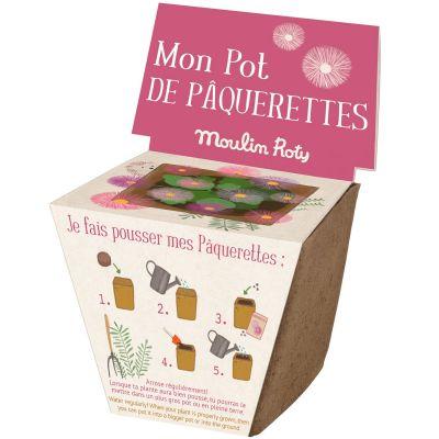 Pot de graines pâquerette Le Jardin du Moulin  par Moulin Roty