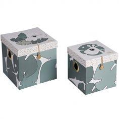 Lot de 2 boîtes de rangement Raffi et Croco Tiny Tropics