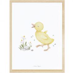 Affiche encadrée caneton Little duck (30 x 40 cm)