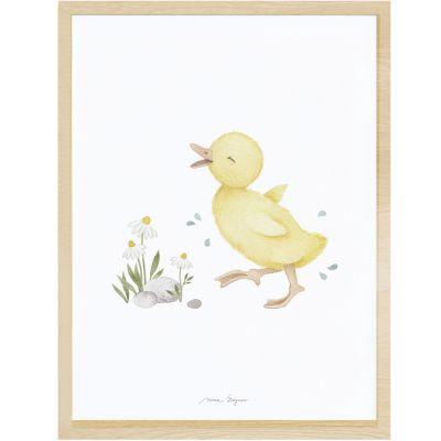Affiche encadrée caneton Little duck (30 x 40 cm) Lilipinso
