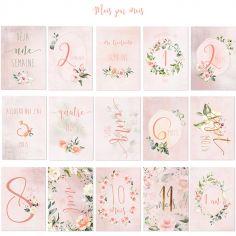 Cartes étapes de bébé Ma première année rose (15 cartes)
