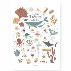Affiche A3 Les petits trésors de la mer