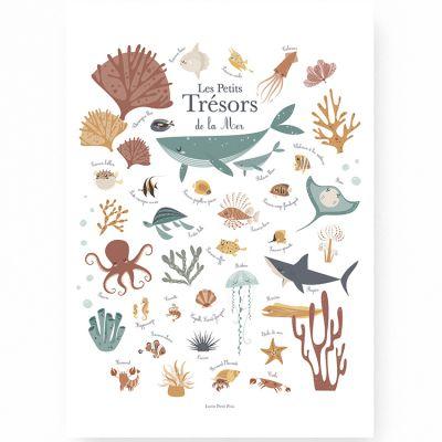 Affiche A3 Les petits trésors de la mer  par Lutin Petit Pois