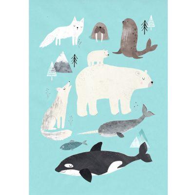 Affiche Animaux arctiques (50 x 70 cm)  par Petit Monkey