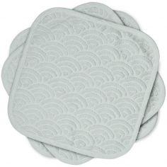 Lot de 3 débarbouillettes grises (30 x 30 cm)