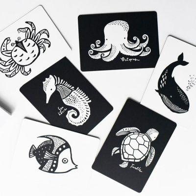 Cartes imagier pour bébé Océan  par Wee Gallery