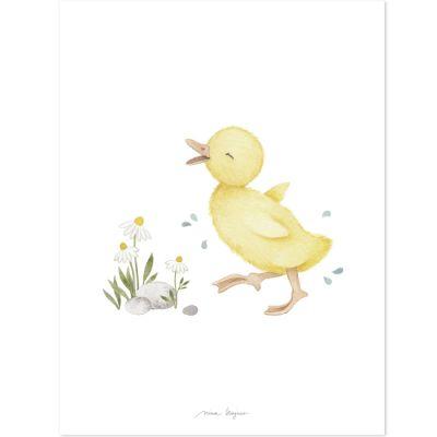 Affiche caneton Little duck (30 x 40 cm) Lilipinso