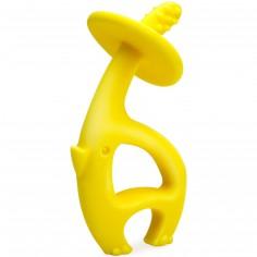 Eléphant de dentition jaune