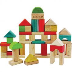 Blocs de construction (50 cubes)