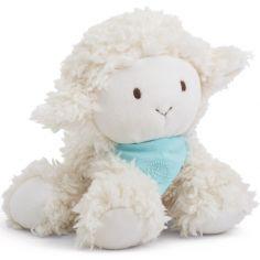 Coffret peluche Vanille l'agneau Les amis (25 cm)