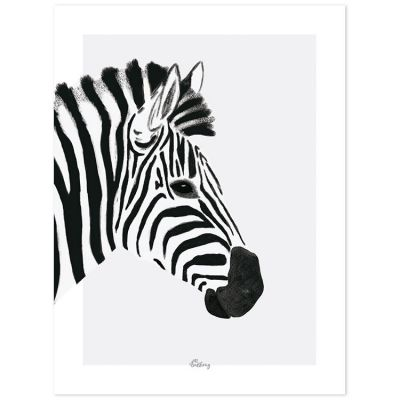 Affiche le zèbre (30 x 40 cm)  par Lilipinso