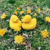 Petit canard latex d'hévéa jaune  par Oli & Carol
