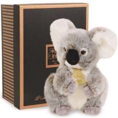Coffret peluche Koala Les authentiques (25 cm)