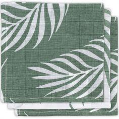 Lot de 3 minis langes Nature vert cendre (31 x 31 cm)