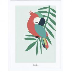 Affiche encadrée perroquet vert (30 x 40 cm)