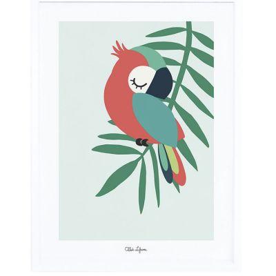 Affiche encadrée perroquet vert (30 x 40 cm)  par Lilipinso
