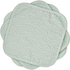 Lot de 3 débarbouillettes vert sauge (30 x 30 cm)